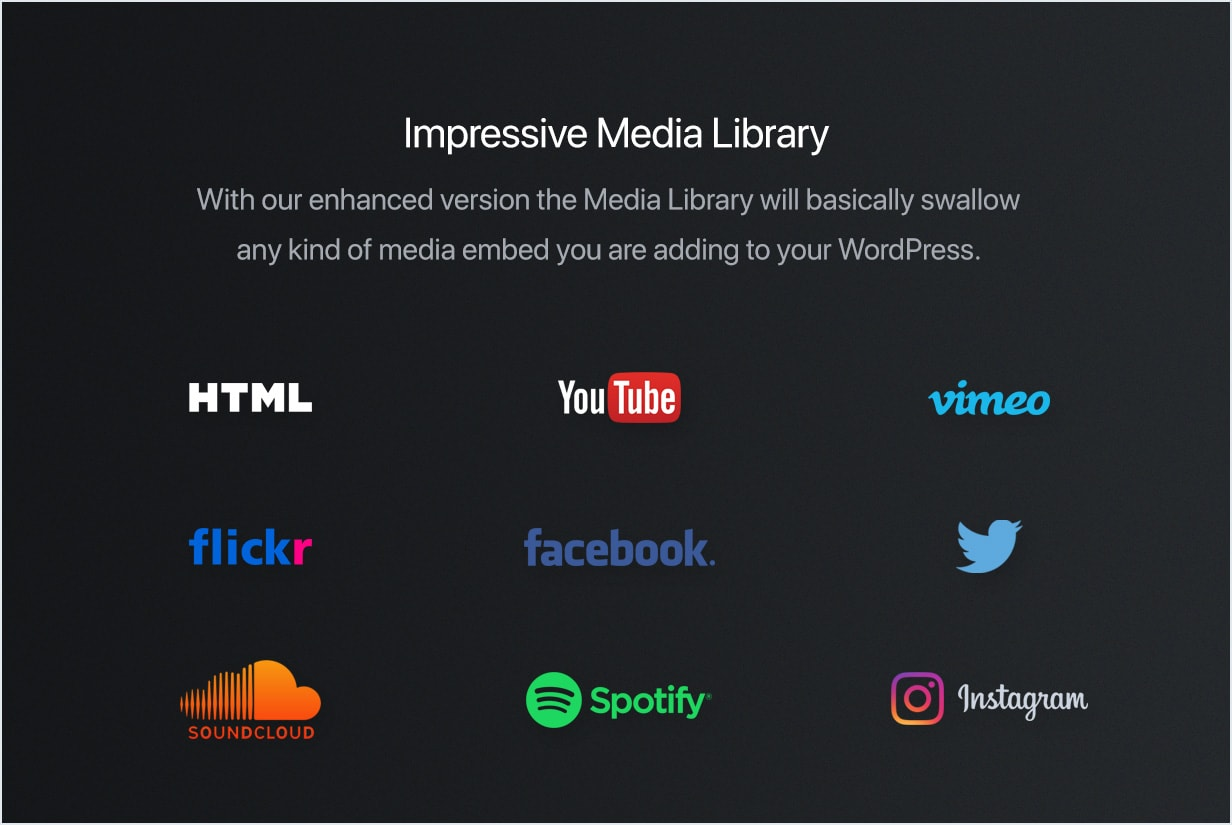 YouTube, Vimeo, Spotify, Twitter, Flickr, SoundCloud, Instagram